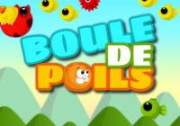 Boule De Poils