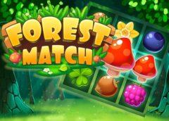 Forest Match