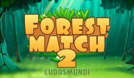 Forest Match 2